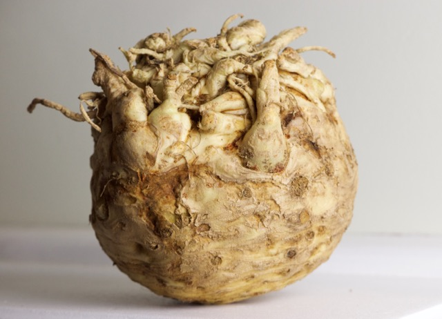 Celery root in all its glory